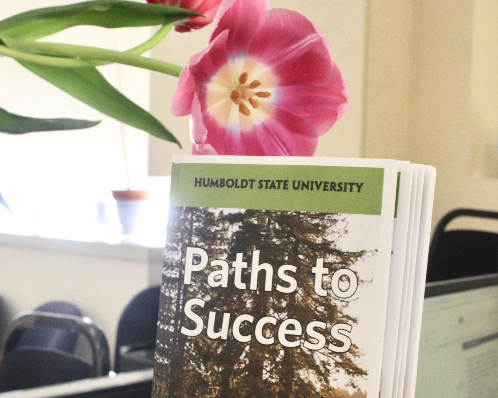 A photo of our office with a pretty flower arrangement with our Path to Success brochure.