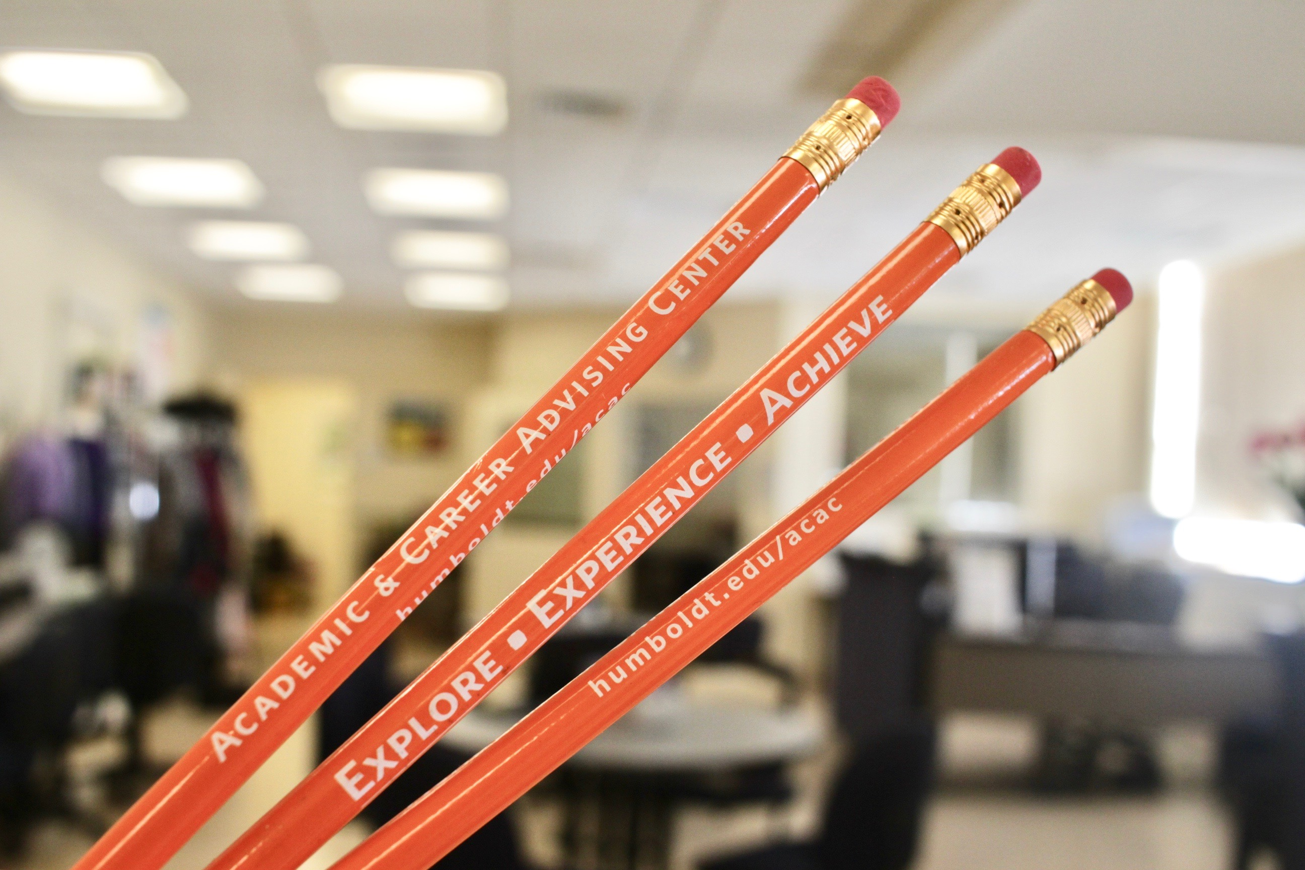 Photo of our center with our pencils that have our phone number, center name, and logo