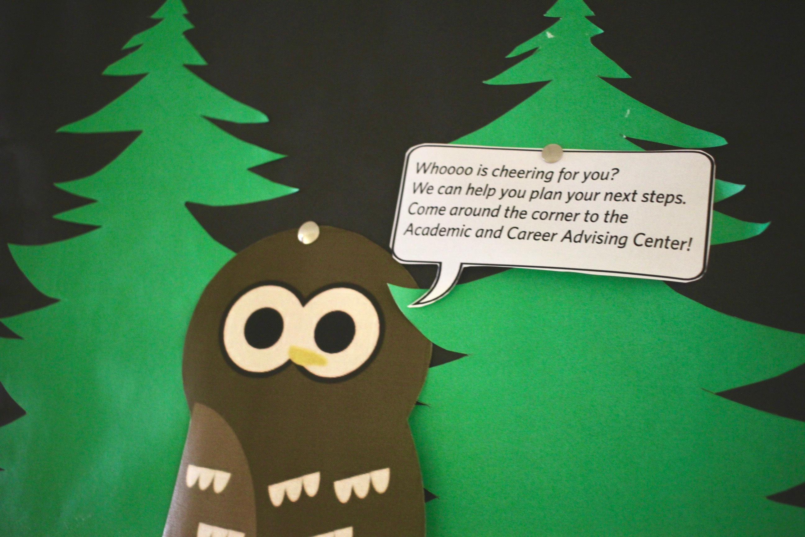 Image of one of the cute owls on the board outside our center with our path to success advice.