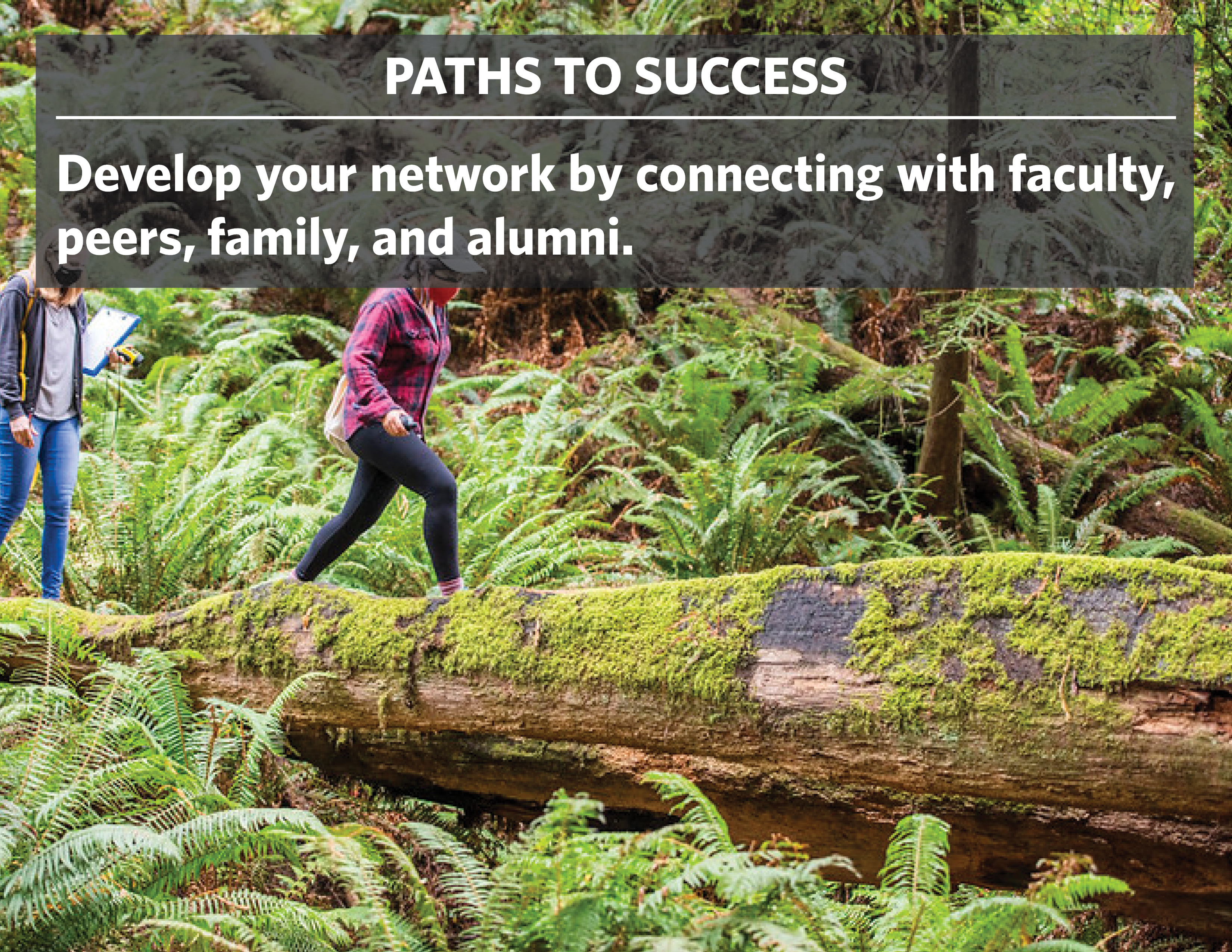Paths to success: Develop your network by connecting with faculty, peers, family, and alumni.