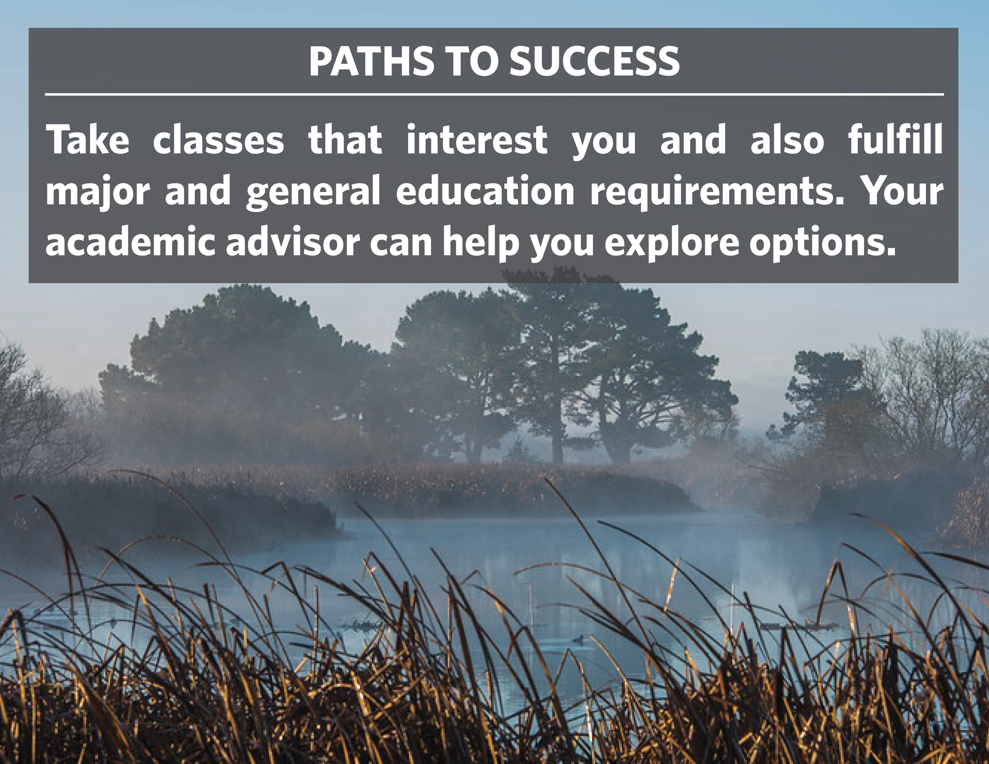 Paths to Success: Take classes that interest you and also fulfill major and general education requirements. Your academic advisor can help you explore options.